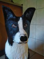 Border_Collie_Holz_2